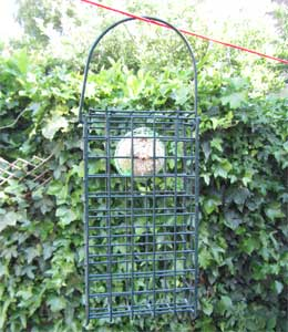 Box cage bird feeder with fat ball style bird food inside