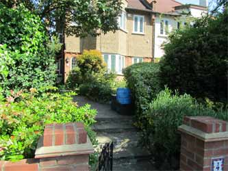 A town garden with an excellent range of cover for attracting birds