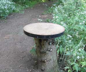 Tree stump bird table for feeding birds, ideal for a woodland garden