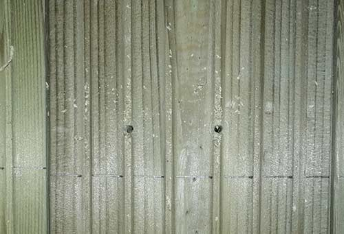 Pilot holes drilled in table top timber