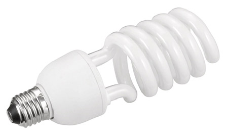CFL or fluorescent light bulb