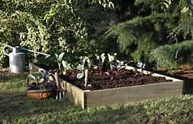 Example of a Raised Planting Bed