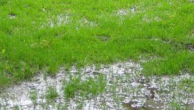 Waterlogged grass caused by heavy clay soil