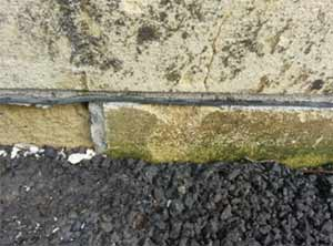 A damp proof course will stop rising damp from rising