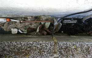A bridged cavity void area can cause rising damp to occur