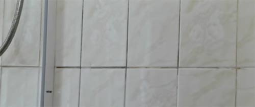 Dirty grout joints on tiled bathroom wall