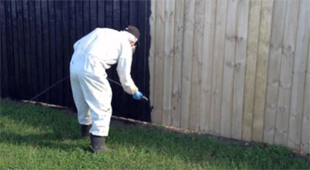Treating featherboard fence