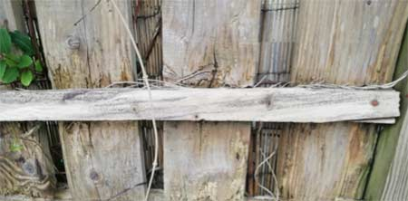 Untreated softwood damages easily