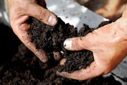 Person Filtering Through Soil