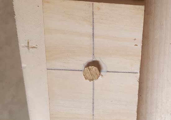 Wood plug glued in place