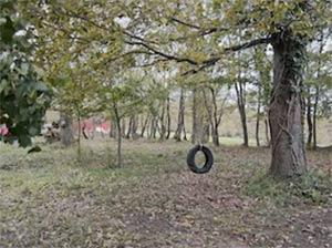 Single mounted tyre swing