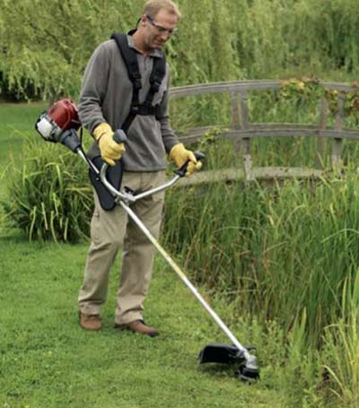 Strimmer with harness