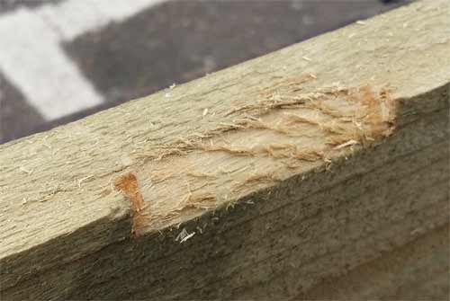 Rough surface after using rough grade rasp
