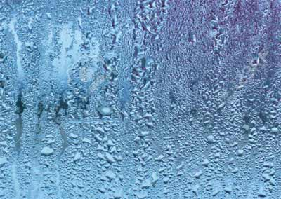 Condensation collecting on window