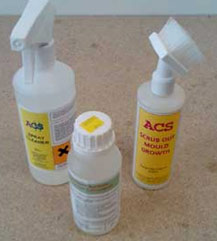Use an Anti-Mould cleaner and salt neutraliser to treat your walls surface