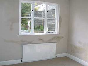 Damp patches all over your wall are typically caused by penetrating dampness
