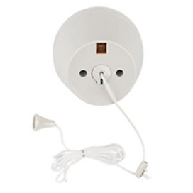 Ceiling or pull cord switch